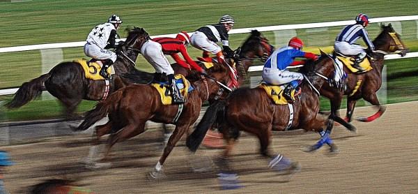 Horse race gambling online