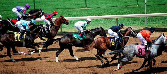 Betting on horse races