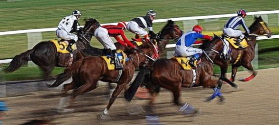 Win, Place Horse Race Betting Explained