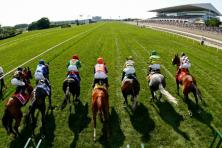 How to watch live horse races online